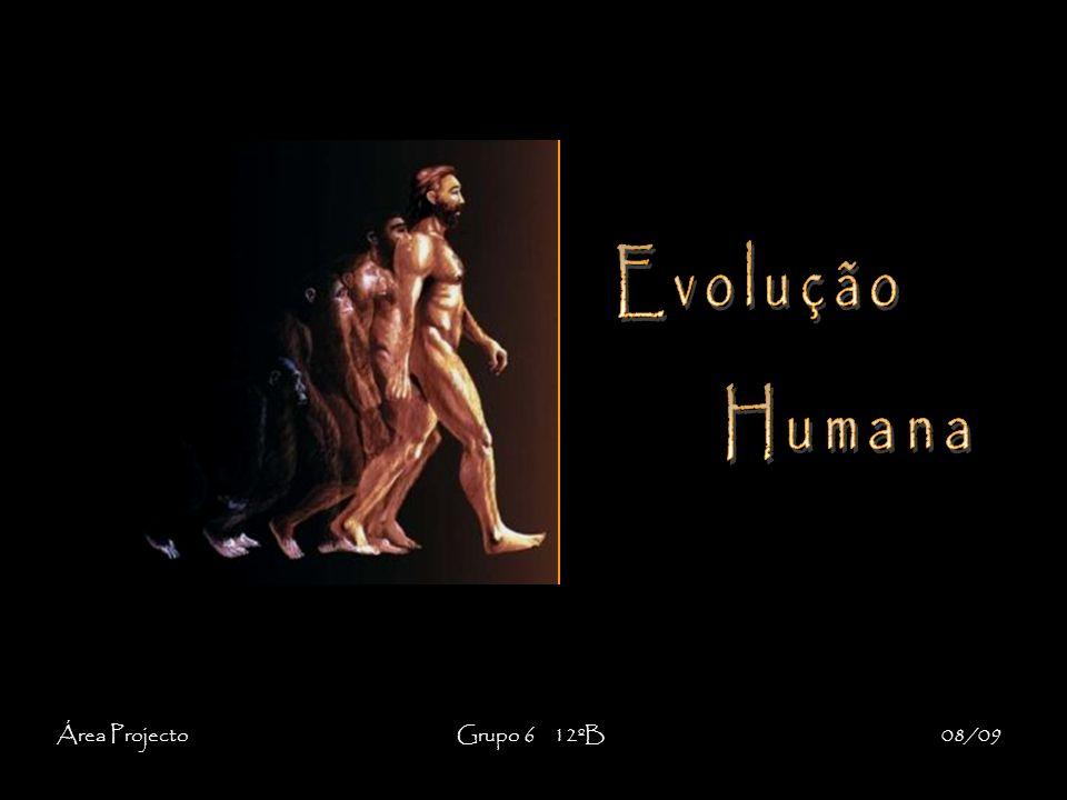 EvoluçãoHumana.