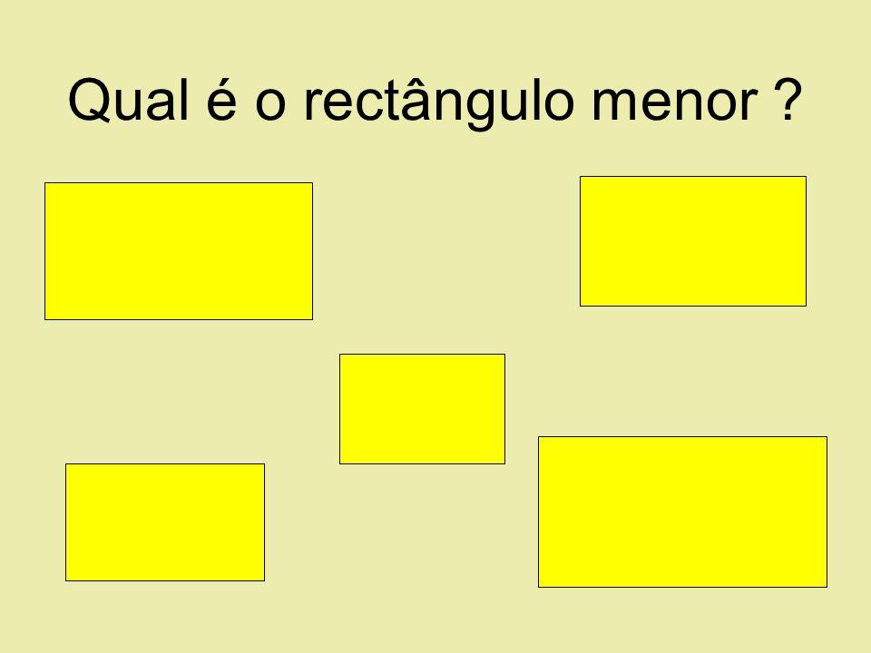Qual é o rectângulo menor