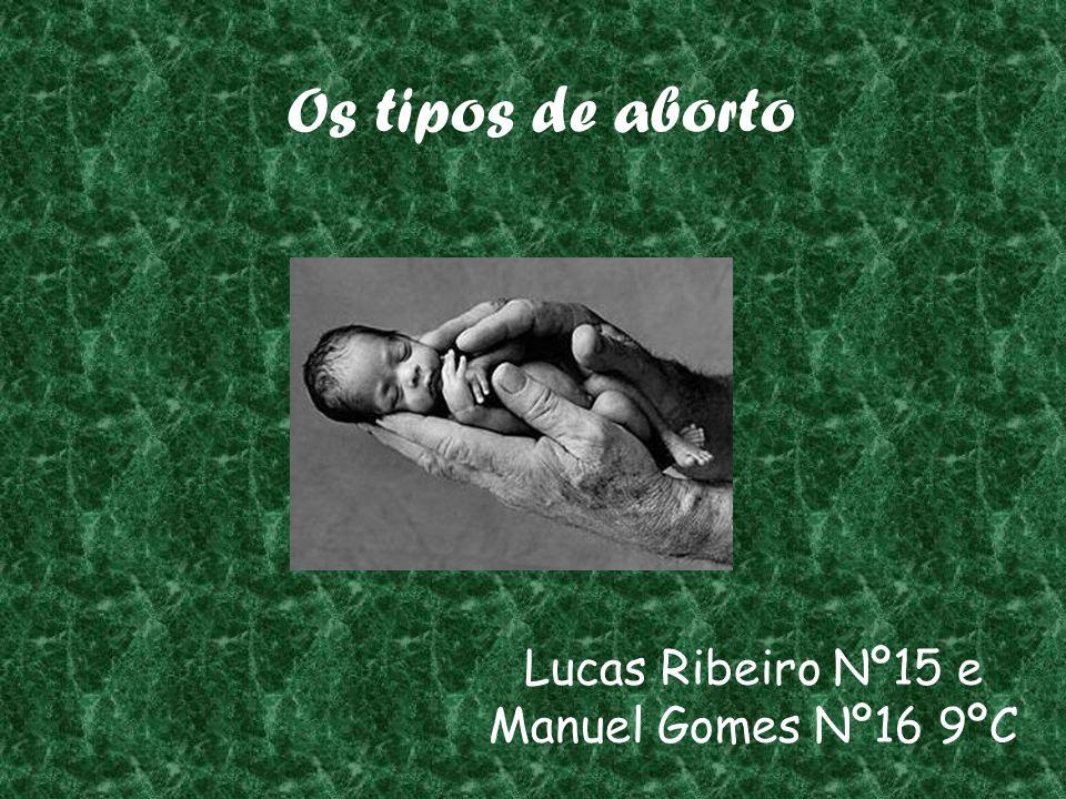 Lucas Ribeiro Nº15 e Manuel Gomes Nº16 9ºC