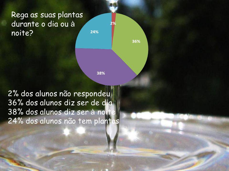 Rega as suas plantas durante o dia ou à noite