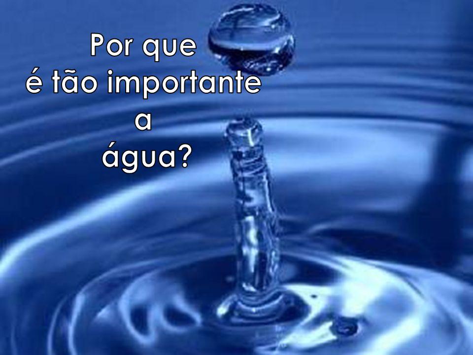Por que é tão importante a água