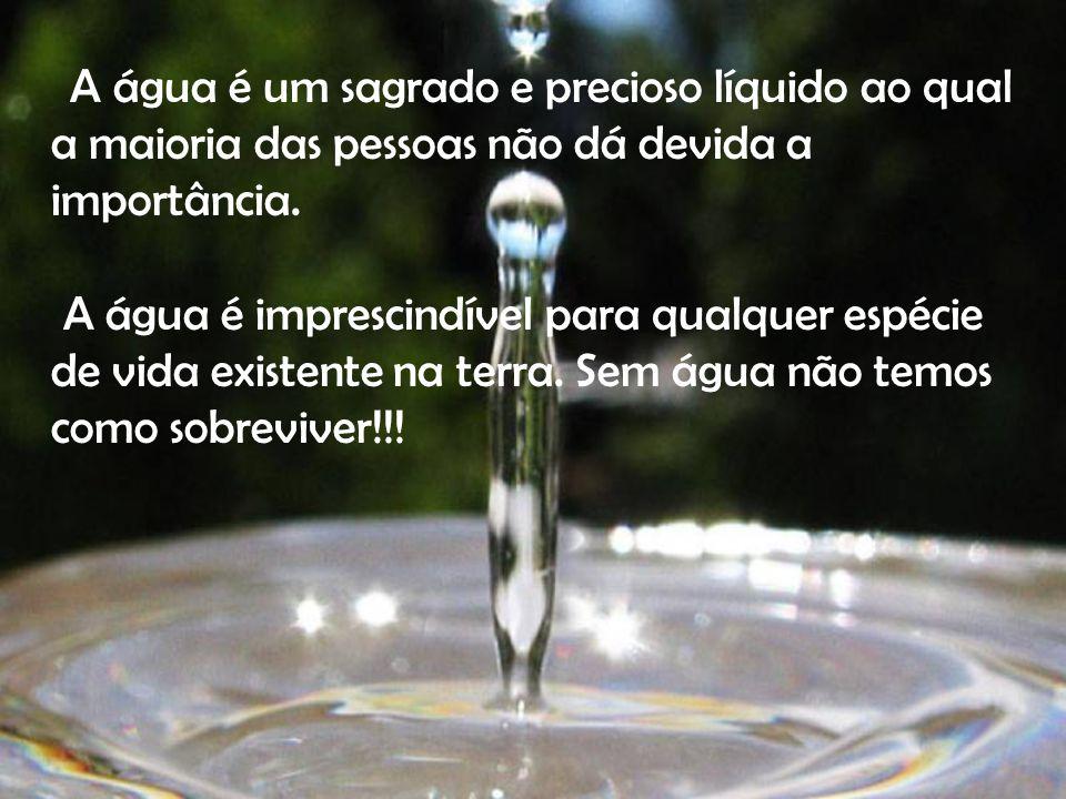 A água é um sagrado e precioso líquido ao qual a maioria das pessoas não dá devida a importância.