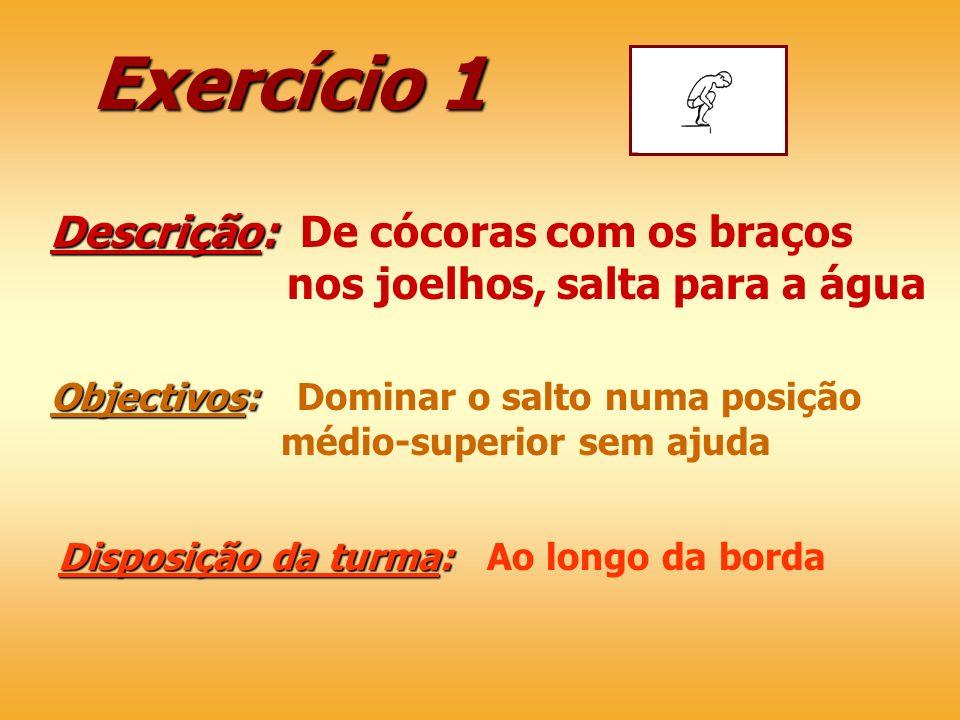 Exercício 1 Descrição: De cócoras com os braços