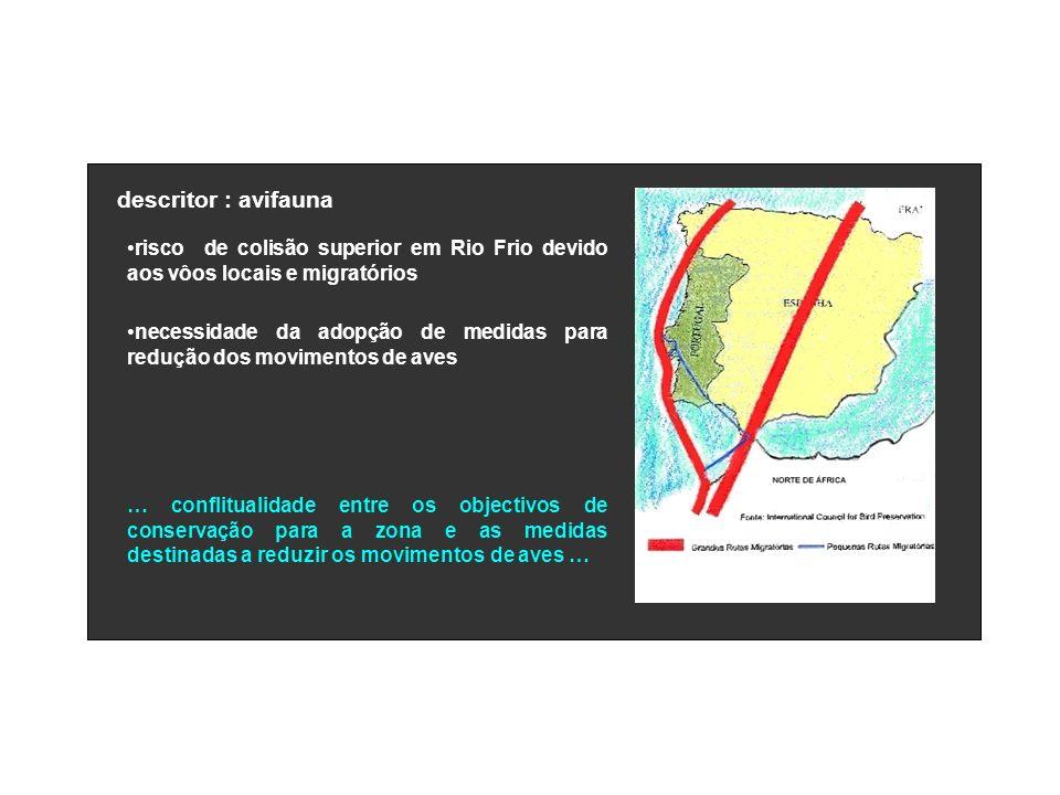 descritor : avifauna risco de colisão superior em Rio Frio devido aos vôos locais e migratórios.