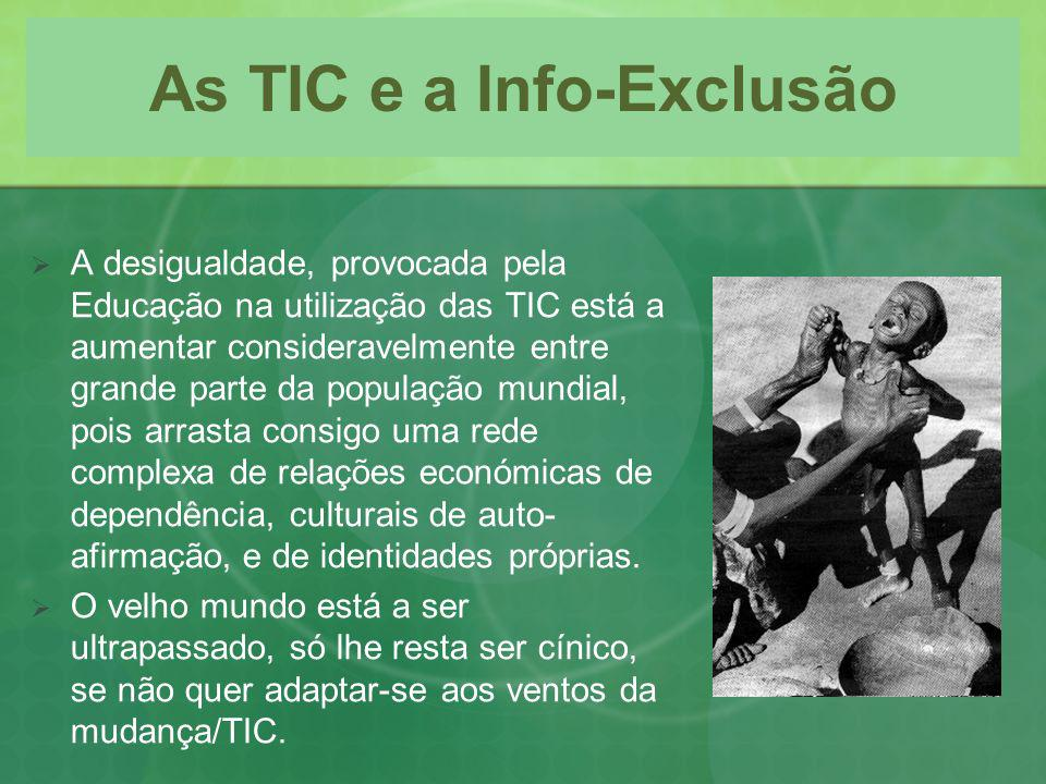 As TIC e a Info-Exclusão