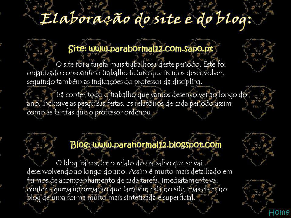 Elaboração do site e do blog: