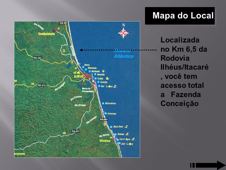 Mapa do Local Localizada no Km 6,5 da Rodovia Ilhéus/Itacaré, você tem acesso total a Fazenda Conceição.