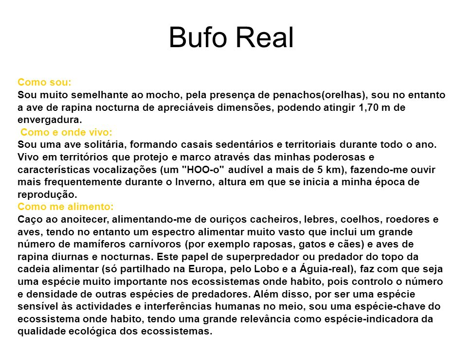 Bufo Real