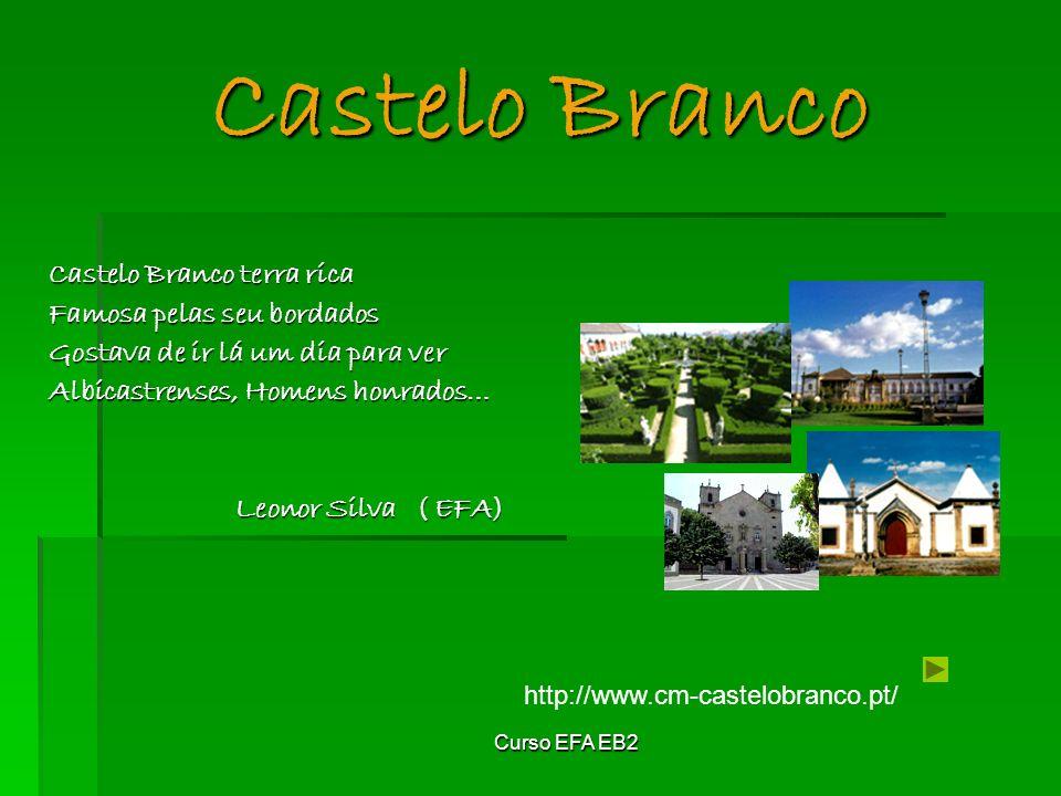 Castelo Branco Castelo Branco terra rica Famosa pelas seu bordados