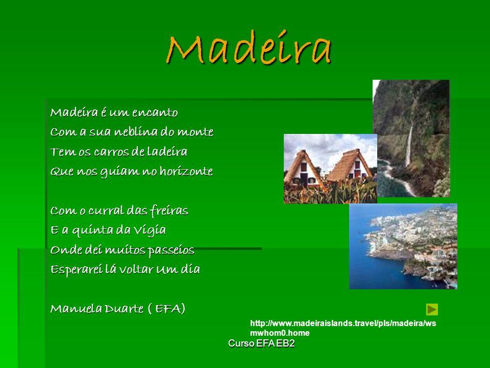 Madeira Madeira é um encanto Com a sua neblina do monte