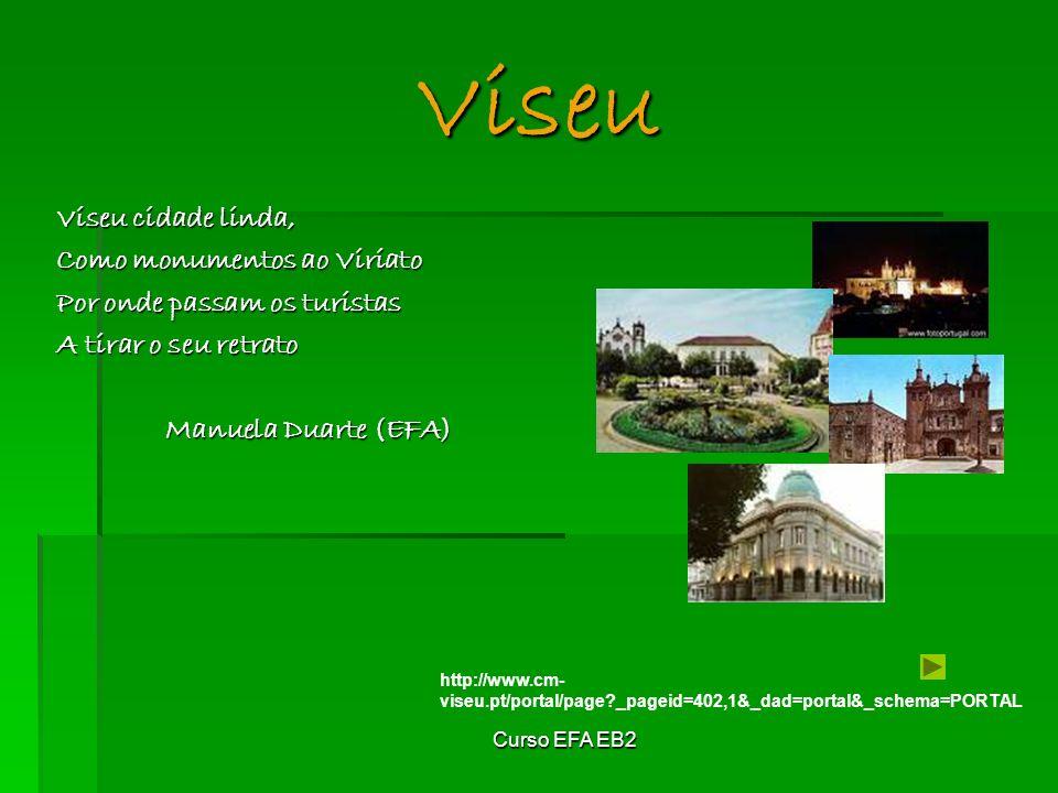 Viseu Viseu cidade linda, Como monumentos ao Viriato