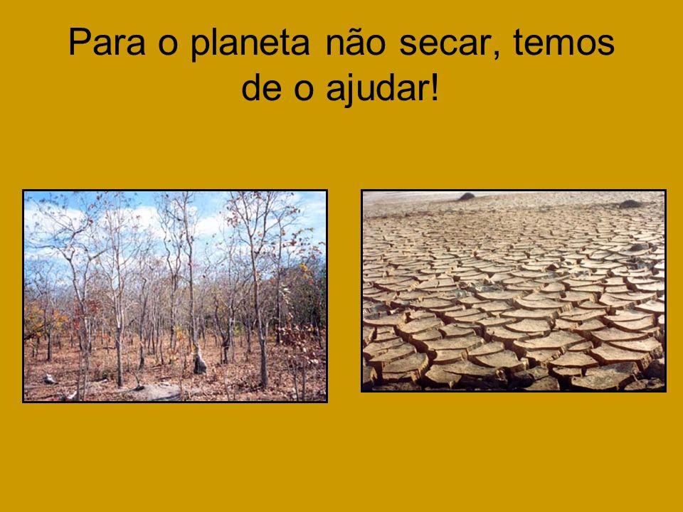 Para o planeta não secar, temos de o ajudar!