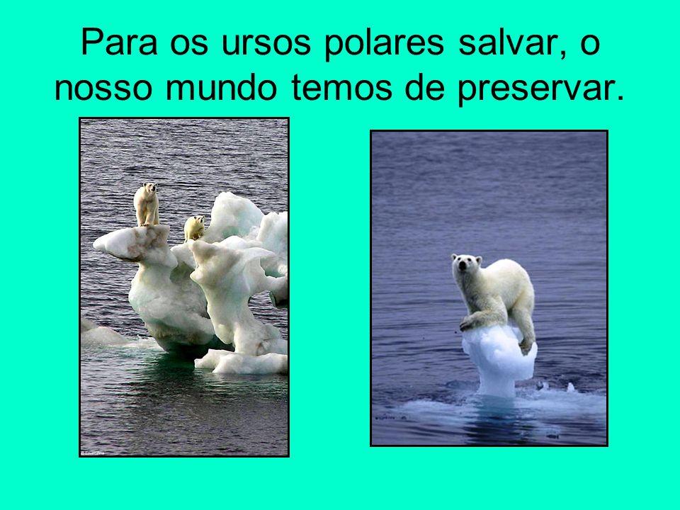 Para os ursos polares salvar, o nosso mundo temos de preservar.