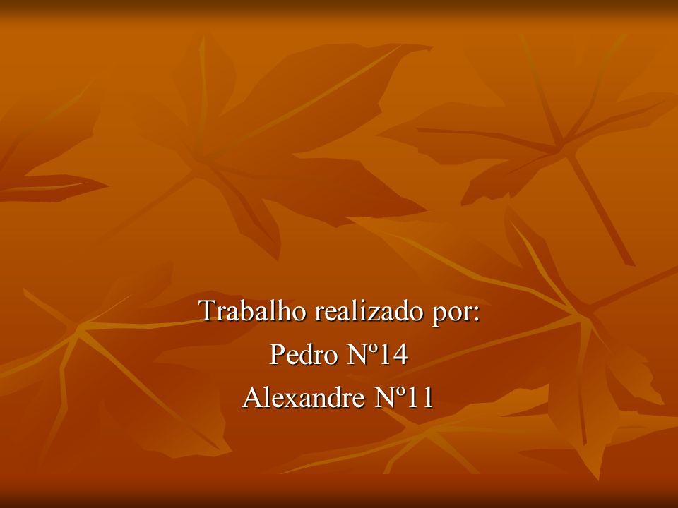 Trabalho realizado por: Pedro Nº14 Alexandre Nº11