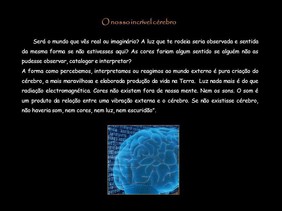 O nosso incrível cérebro