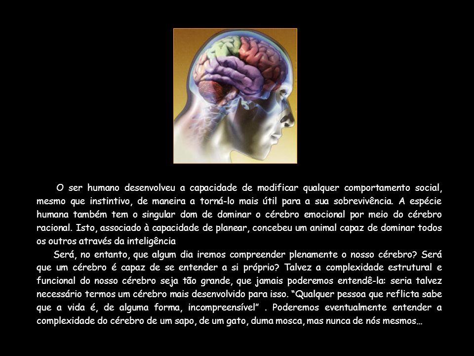 O ser humano desenvolveu a capacidade de modificar qualquer comportamento social, mesmo que instintivo, de maneira a torná-lo mais útil para a sua sobrevivência. A espécie humana também tem o singular dom de dominar o cérebro emocional por meio do cérebro racional. Isto, associado à capacidade de planear, concebeu um animal capaz de dominar todos os outros através da inteligência