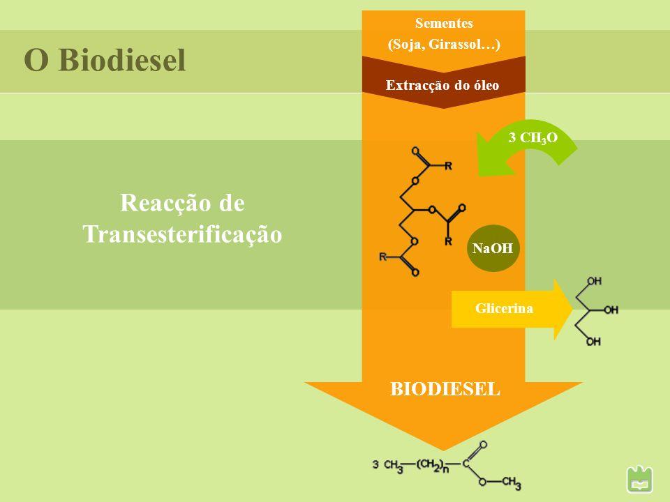 O Biodiesel Reacção de Transesterificação BIODIESEL Sementes