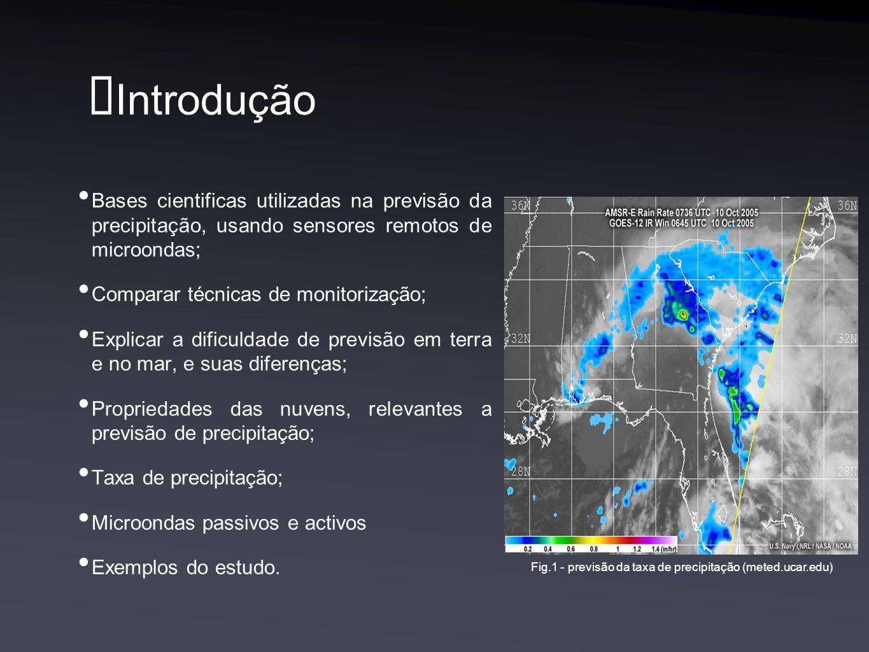 Fig.1 - previsão da taxa de precipitação (meted.ucar.edu)