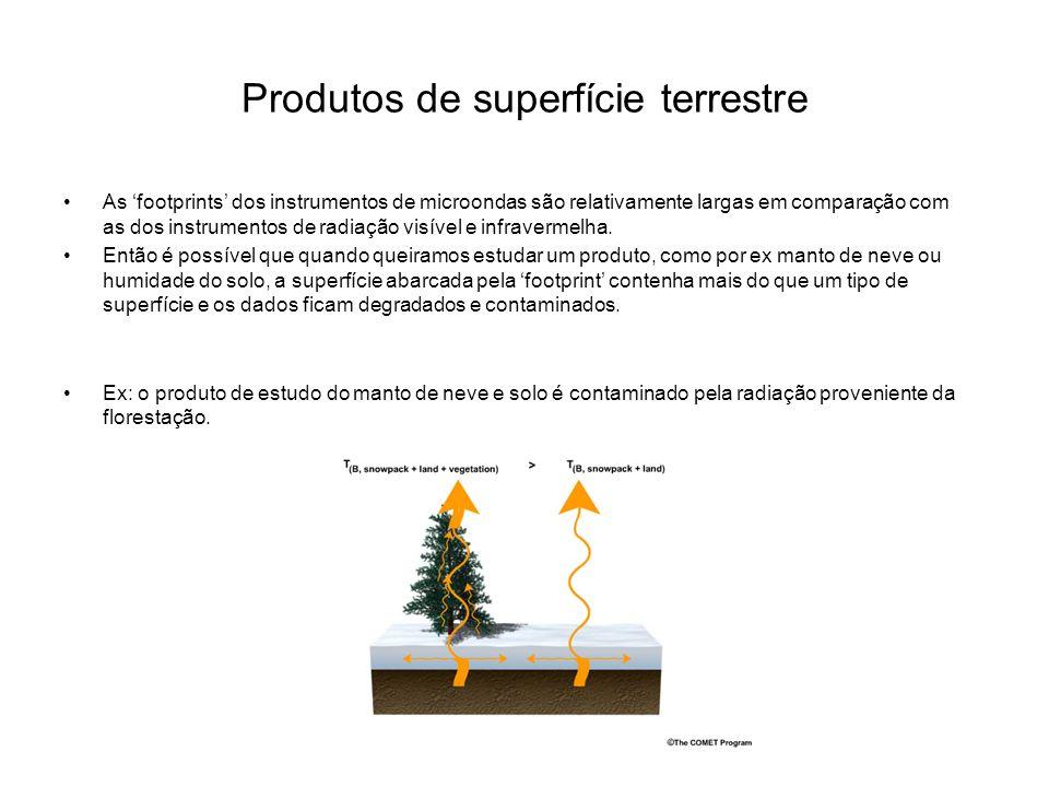 Produtos de superfície terrestre