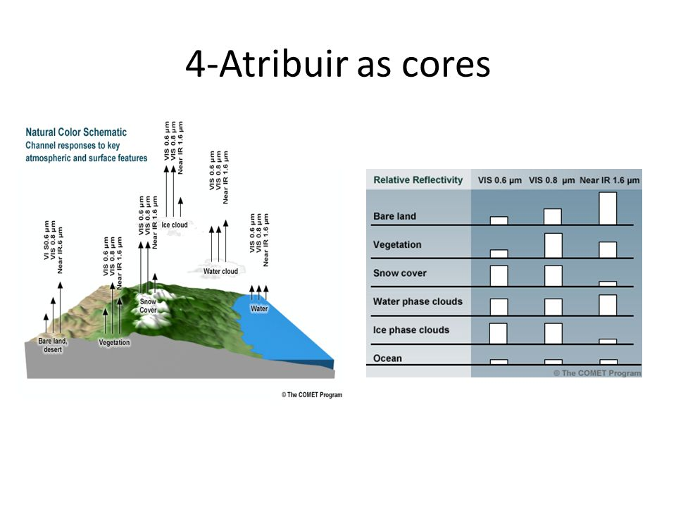 4-Atribuir as cores