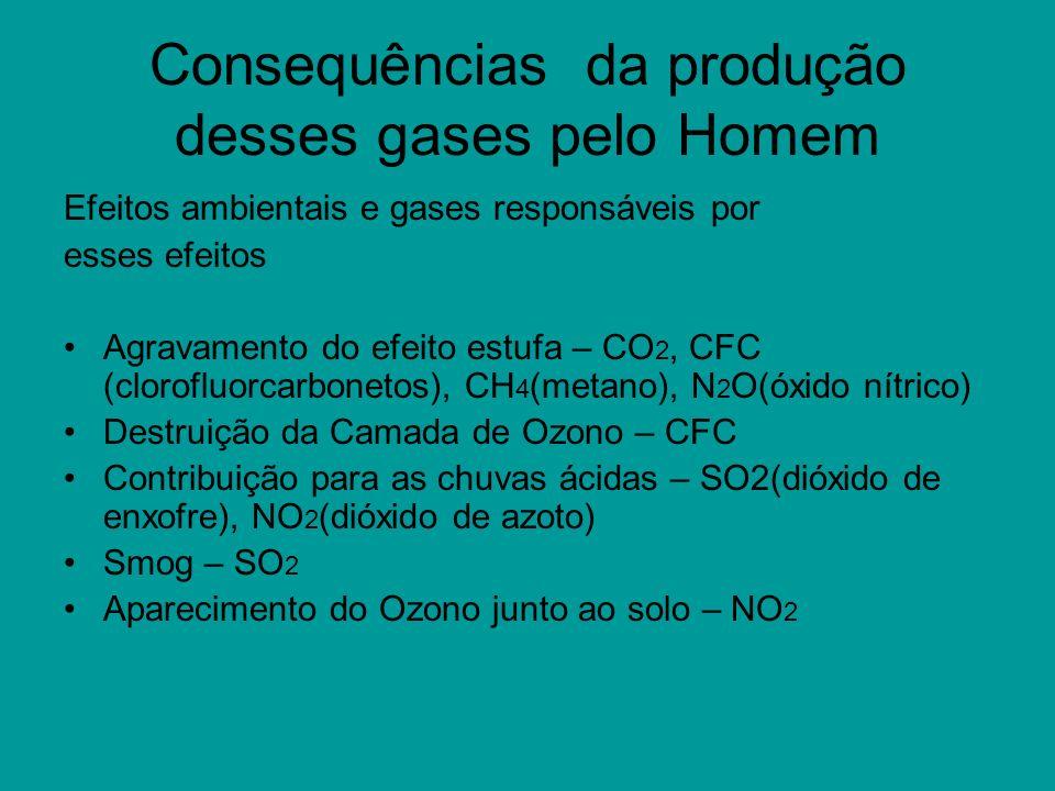 Consequências da produção desses gases pelo Homem