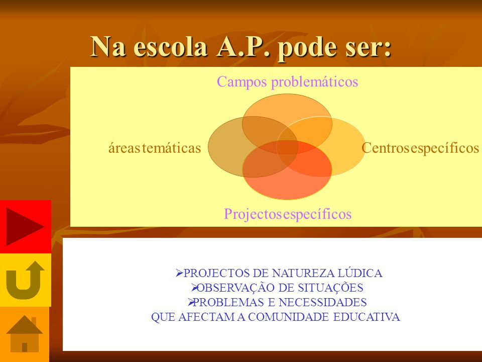 Na escola A.P. pode ser: PROJECTOS DE NATUREZA LÚDICA