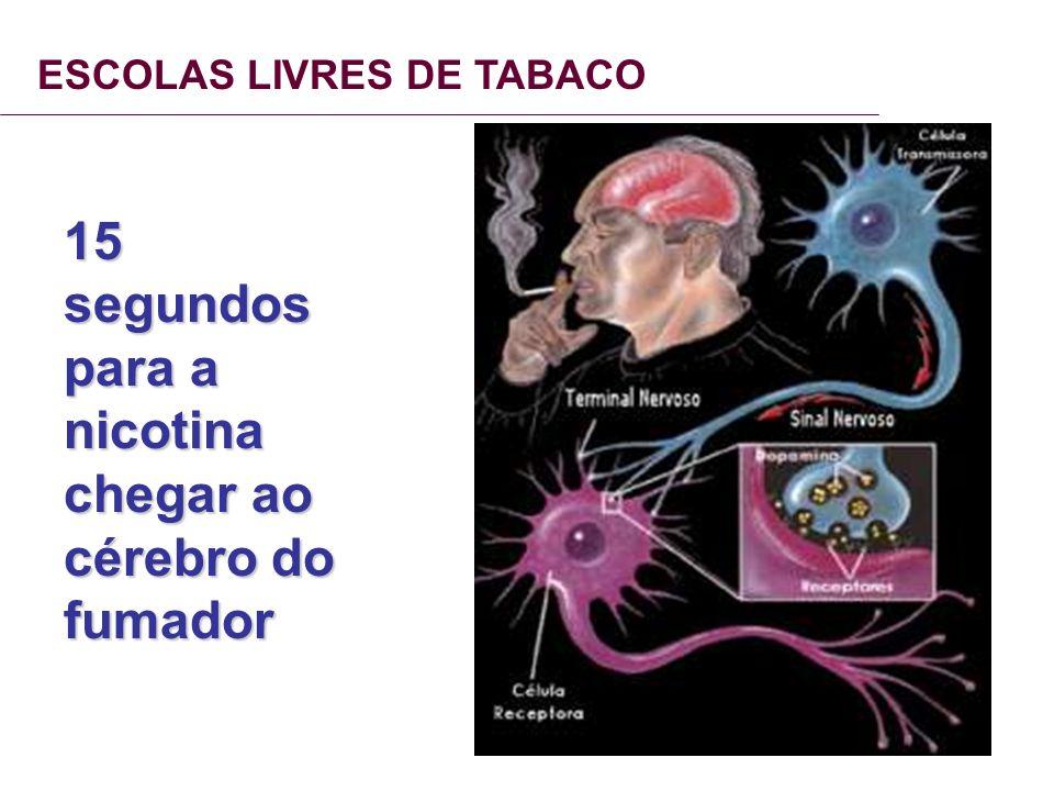 15 segundos para a nicotina chegar ao cérebro do fumador