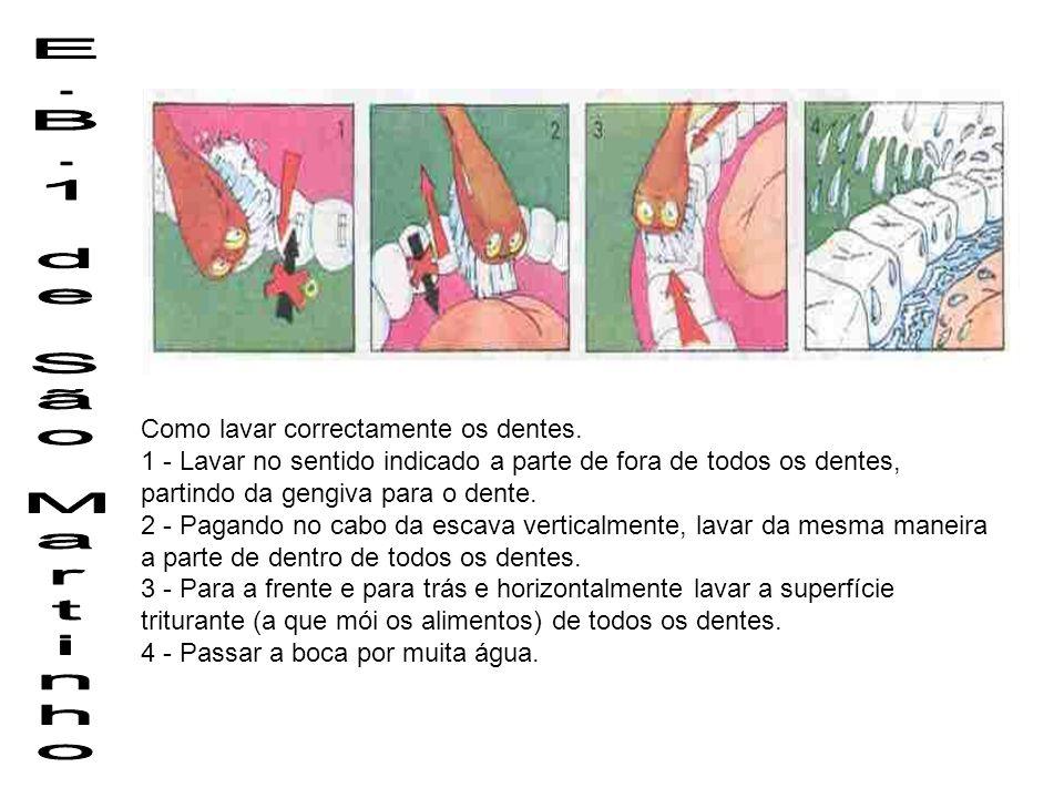 E.B.1 de São Martinho Como lavar correctamente os dentes.