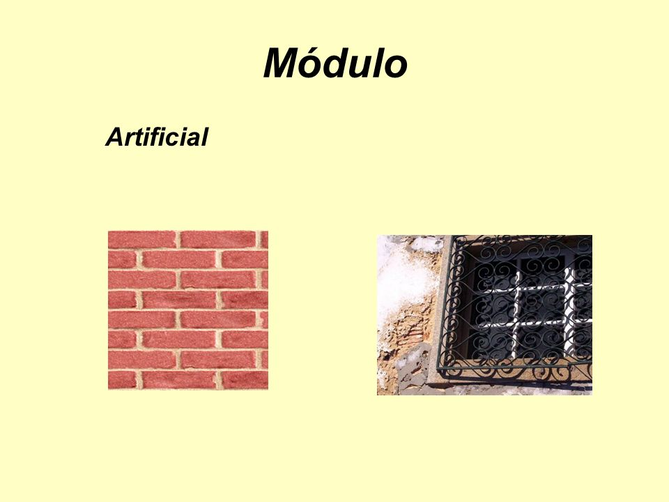 Módulo Artificial