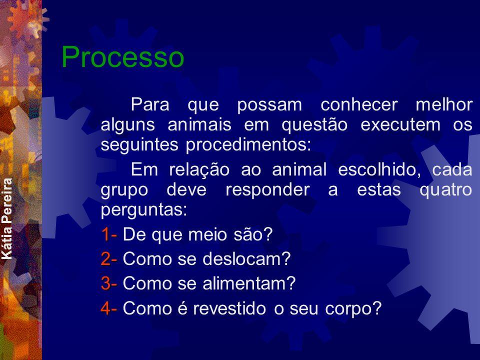 Processo Para que possam conhecer melhor alguns animais em questão executem os seguintes procedimentos: