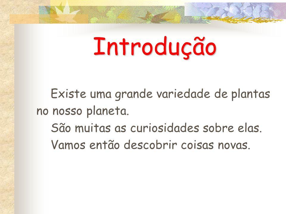Introdução Existe uma grande variedade de plantas no nosso planeta.