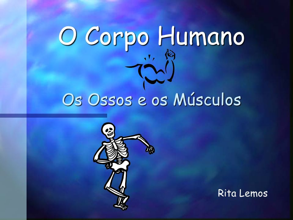 O Corpo Humano Os Ossos e os Músculos Rita Lemos