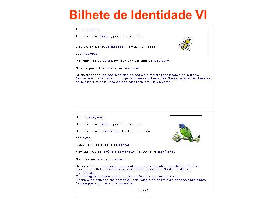 Bilhete de Identidade VI