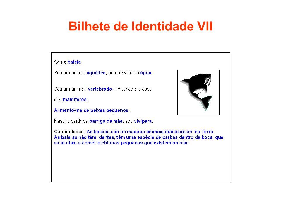 Bilhete de Identidade VII