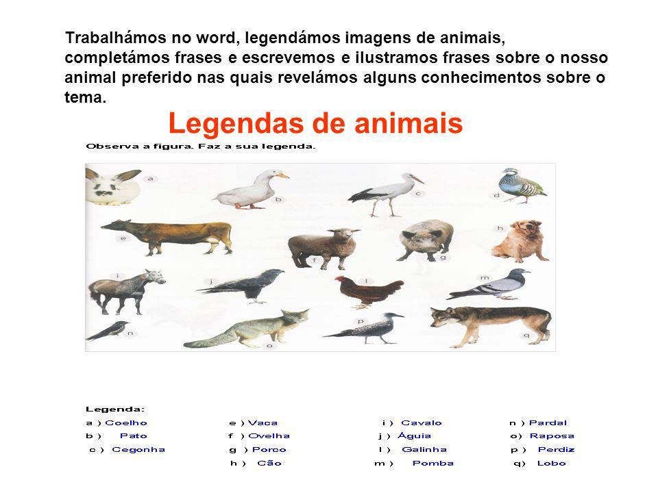 Trabalhámos no word, legendámos imagens de animais, completámos frases e escrevemos e ilustramos frases sobre o nosso animal preferido nas quais revelámos alguns conhecimentos sobre o tema.
