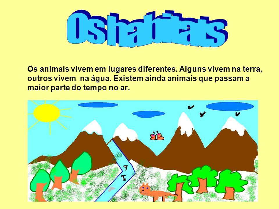 Os habitats