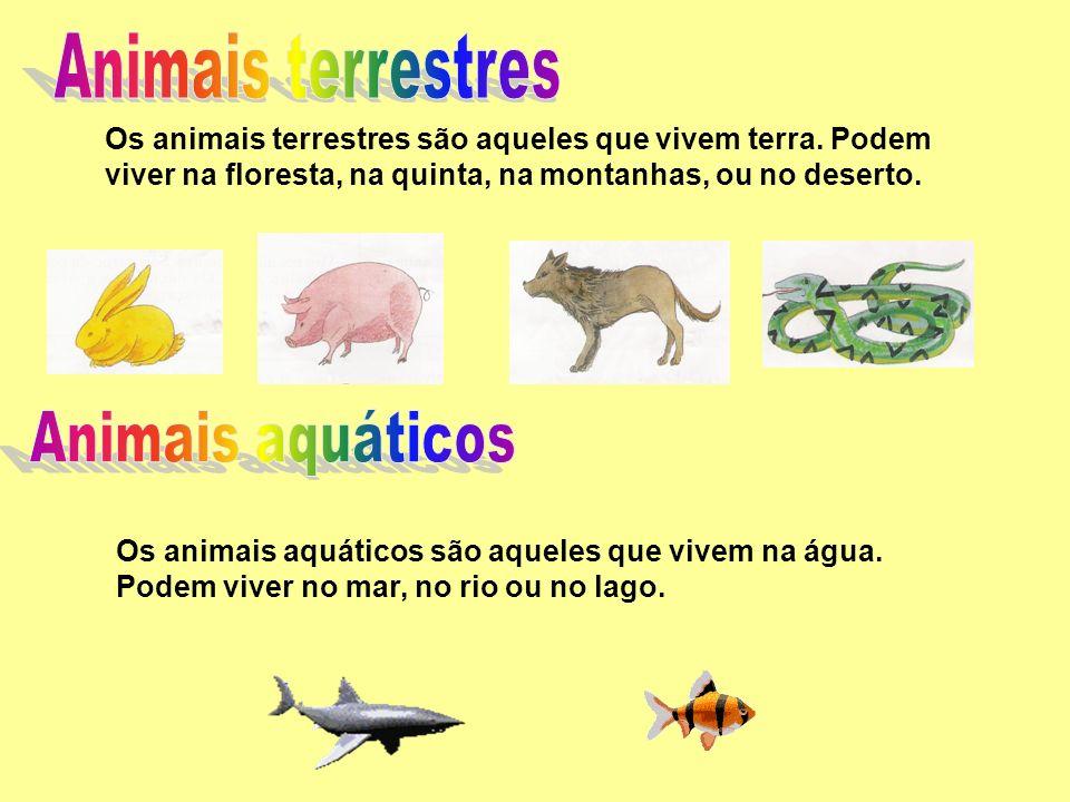 Animais terrestres Animais aquáticos