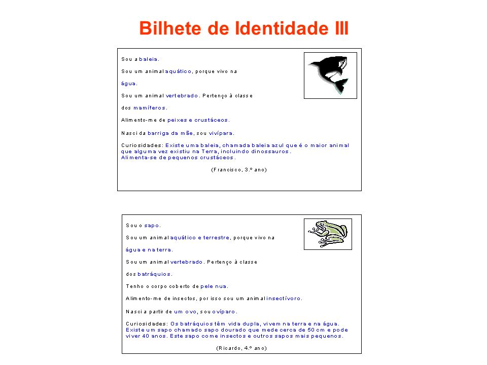 Bilhete de Identidade III