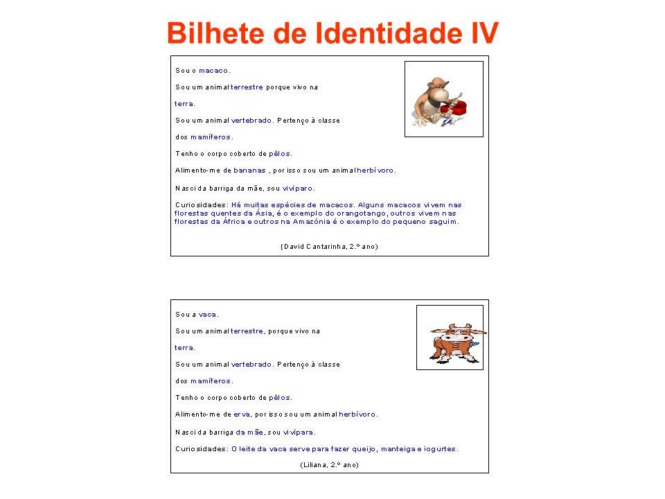 Bilhete de Identidade IV
