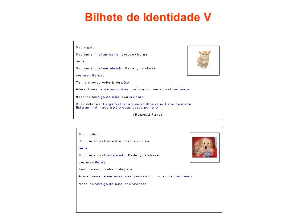 Bilhete de Identidade V