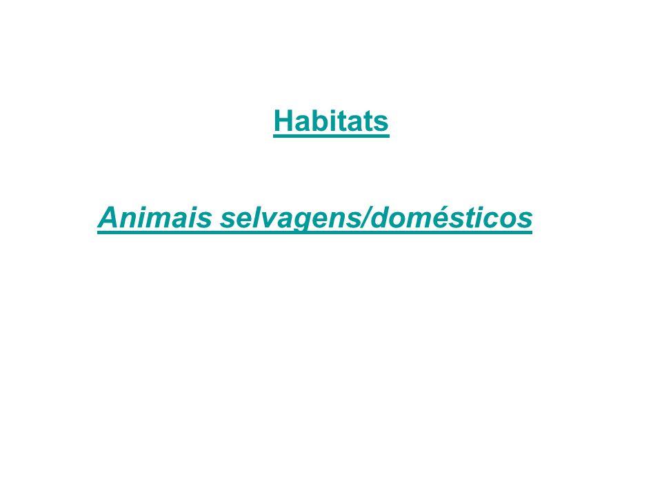 Habitats Animais selvagens/domésticos