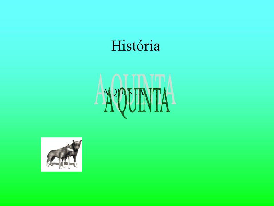 História A QUINTA A QUINTA