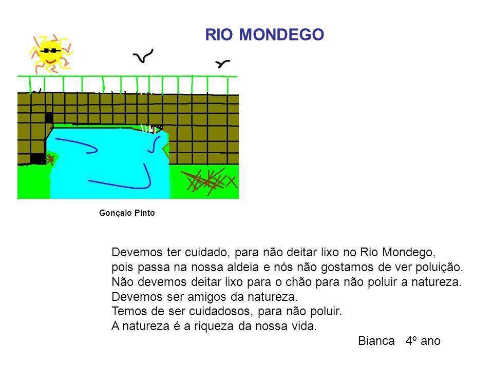 RIO MONDEGO Devemos ter cuidado, para não deitar lixo no Rio Mondego,