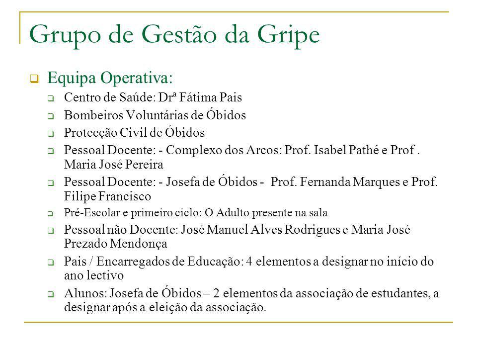 Grupo de Gestão da Gripe