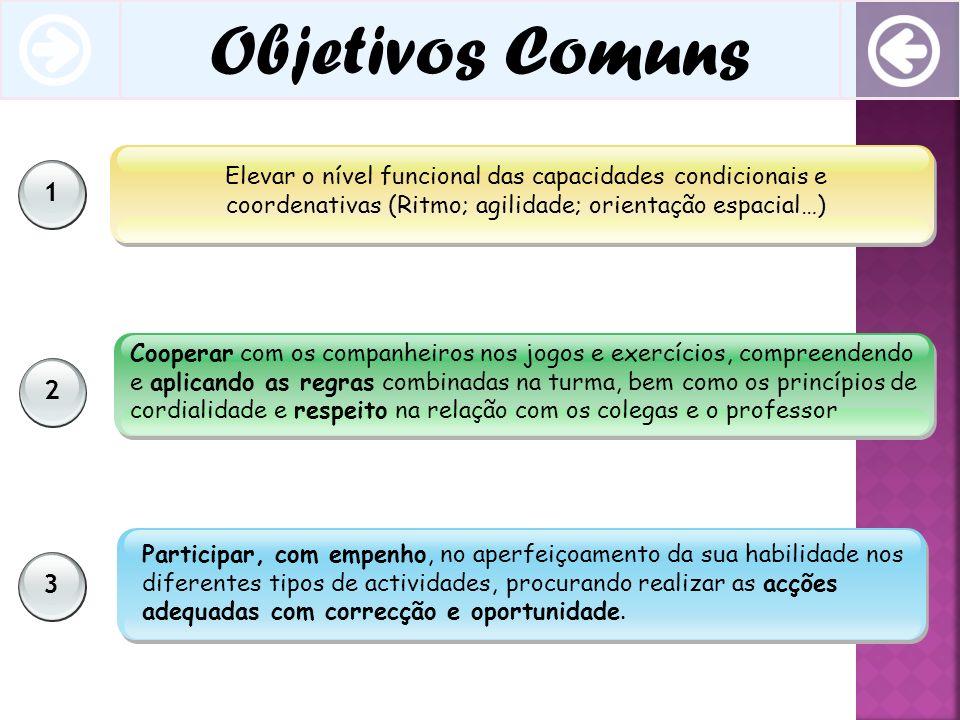 Objetivos Comuns 1. Elevar o nível funcional das capacidades condicionais e coordenativas (Ritmo; agilidade; orientação espacial…)