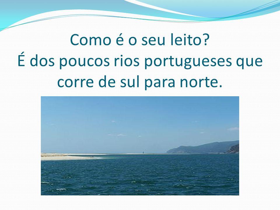 Como é o seu leito É dos poucos rios portugueses que corre de sul para norte.
