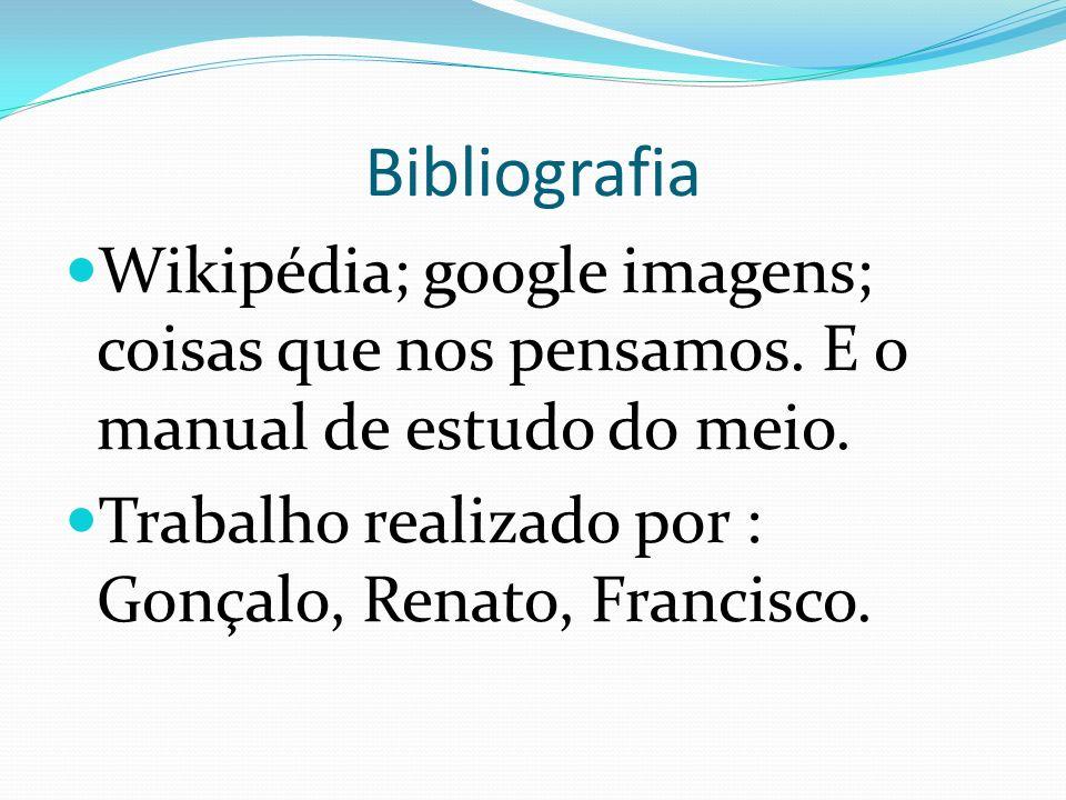 Bibliografia Wikipédia; google imagens; coisas que nos pensamos.