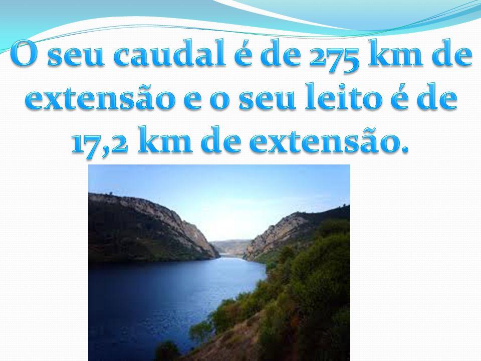O seu caudal é de 275 km de extensão e o seu leito é de 17,2 km de extensão.