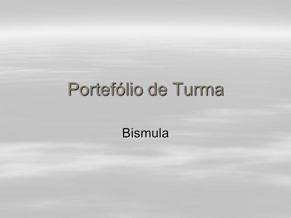 Portefólio de Turma Bismula
