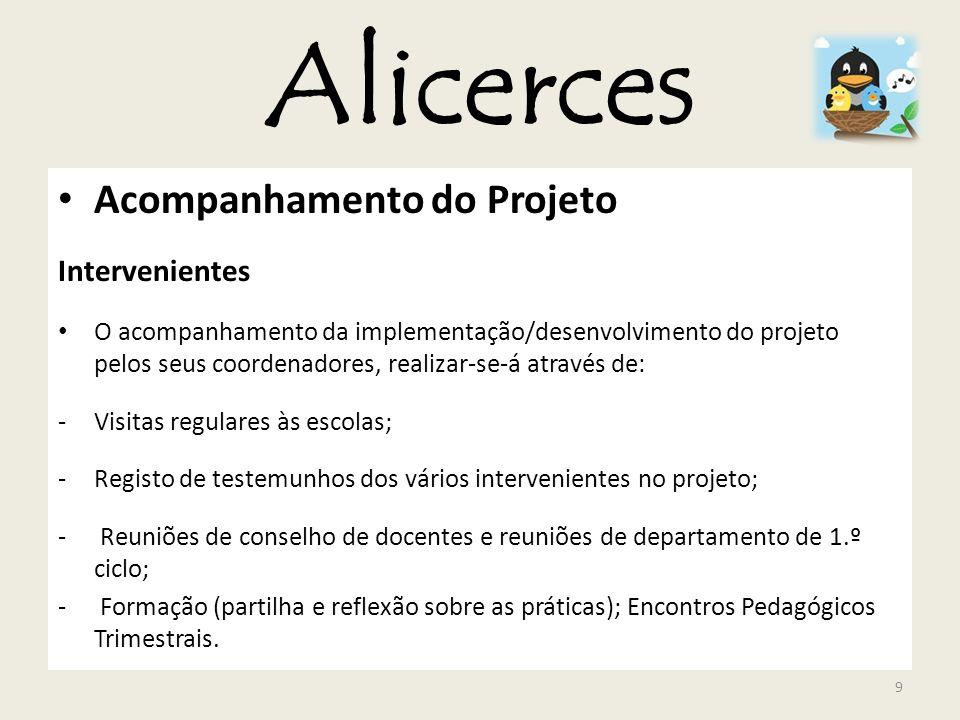 Alicerces Acompanhamento do Projeto Intervenientes